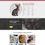 Cat sample website