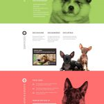 Dog sample website